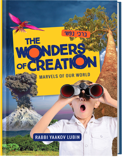 The Wonders of Creation - Mosaica Pres - Hardcover, 115p
